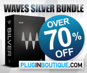 300x25-waves-silver