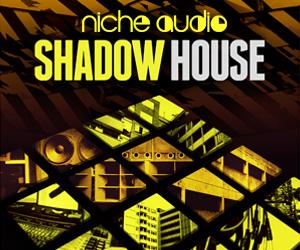 Niche-shadow-house-300-x-250