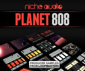 Niche-planet-808-300-x-250