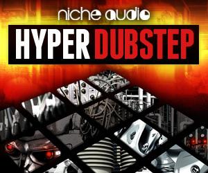Niche-hyper-dubstep-300-x-250