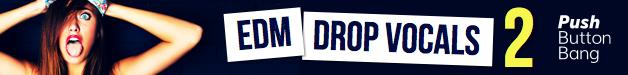 64_edm-drop-vocals2_628x75