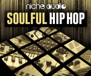 Niche soulful hip hop 300 x 250