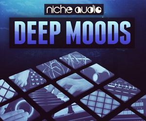 Niche deep moods 300 x 250