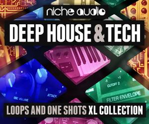 Niche deep house   tech 300 x 250