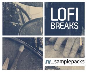 Rv lofi breaks 300 x 250