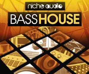 Niche bass house 300 x 250