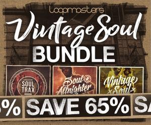 300 x 250 lm vintage soul bundle