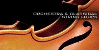 Orchestra_banner_lg