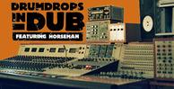 Drumdrops_dub_2_pk2_bnr_lg