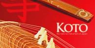 Koto banner lg