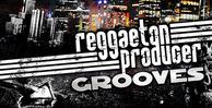 Reggaeton_banner_lg