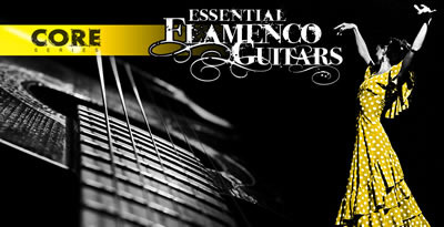 Flamenco banner lg