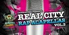 Real City Rap Acapellas Vol. 3