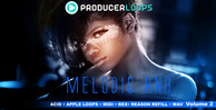 Melodic rnb vol 2 1000x500