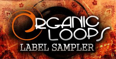 Organic_loops_label_sampler_1000_x_512