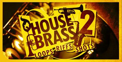 Dgs house brass 02 512