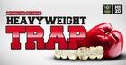 Heavyweight Trap
