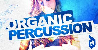 Organic percussion 512