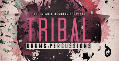 Tribal drums and percs 512