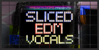 Sliced_edm_vocals_1000x512