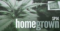 Sp14_home_grown_1000x512