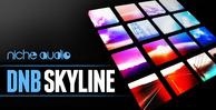 Niche_dnb_skyline_1000_x_512