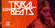 Tribalbeats 1000x512 300dpi