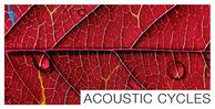 Mountain range acoustic cycles final1000x512
