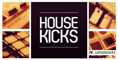 Rv house kicks 1000 x 512