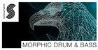 Morphic Drum & Bass