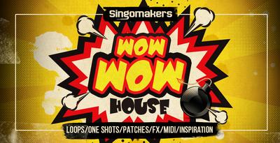 Singomakers wow house 1000x512