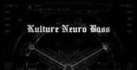 Kultureneurobass maincover1000x512