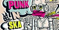 Punknska512