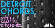 Detroit chords banner