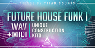 Triadsounds futurehousefunk i1000x512