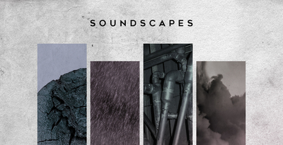 Soundscaped black octopus 1000x512