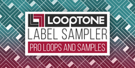 1000 x 512 looptone sampler no sale