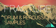 Fracture banner