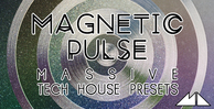 Magnetic pulse banner