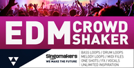 Edm crowd shaker 1000x512 web