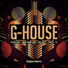 Som_g-house_1000x1000
