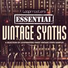 Lm_essential_vintage_synths_1000_x_1000