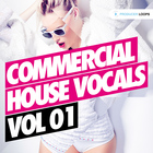 Commercial-house-vocals-vol-1-1000