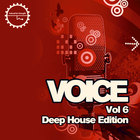 Voice6-1000x1000
