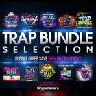 Trap-bundle-sellection_1000x1000