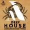 Deephousestabs 2
