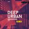 Deep urban grooves vol 01 1000