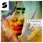 Enzalla ethereal circuit
