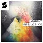 Ambient intelligence 1000