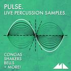 Pulse 1000